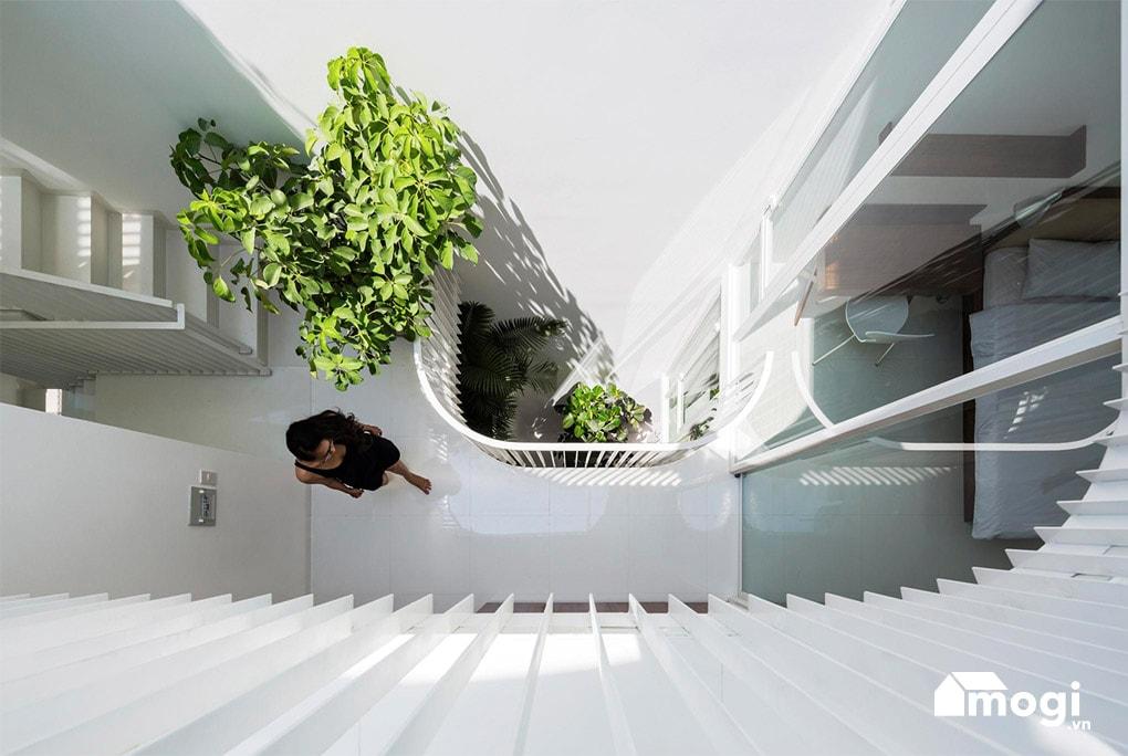 Bí quyết mang ánh sáng tự nhiên vào ngôi nhà 2
